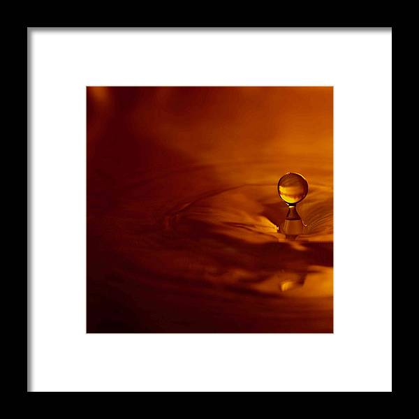 Leaf Framed Print featuring the photograph Orange Drop by Aza Johnson