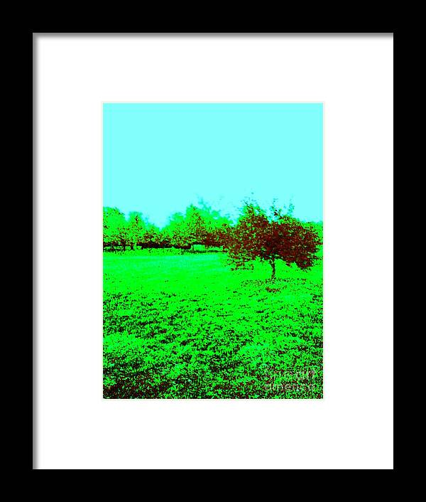 Green Grass Framed Print featuring the photograph Orchard by Linda Wild