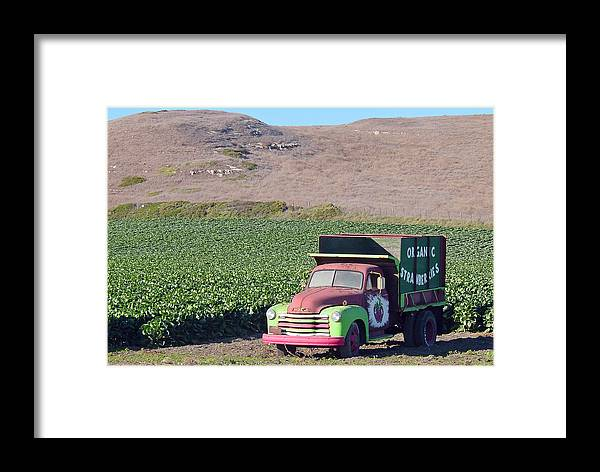 Organic Strawberries Framed Print featuring the photograph Organic Strawberries by Suzanne Gaff