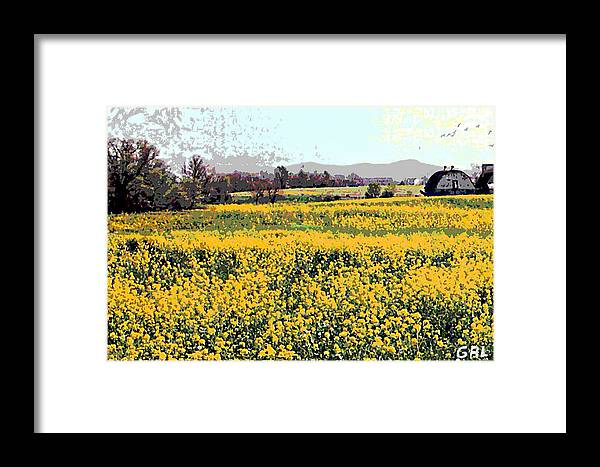Maryland Framed Print featuring the painting Original Fine Art Digital Fields Yellow Flowers Maryland by G Linsenmayer