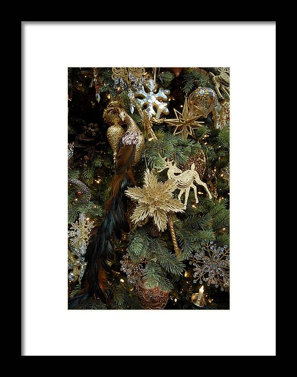 Christmas Ornament Ornament Framed Print featuring the photograph Ornament 165 by Joyce StJames