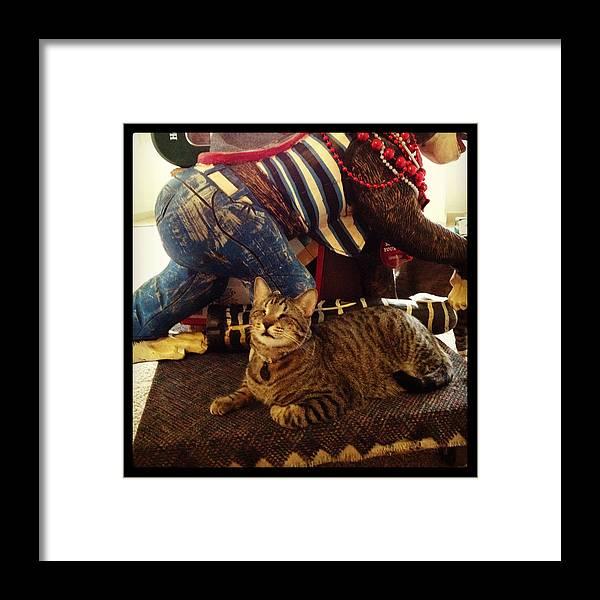 Cat Framed Print featuring the photograph Oskar Lil Monkey by Mick Szydlowski