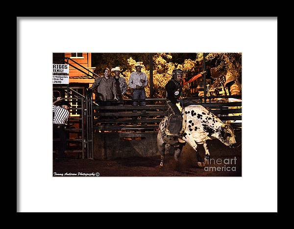 Bull Riding Framed Print featuring the photograph Out Of The Gate by Tommy Anderson