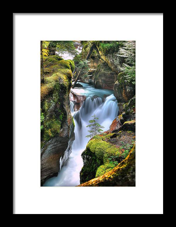 Avalanche Gorge Framed Print featuring the photograph Out On A Ledge by Ryan Smith
