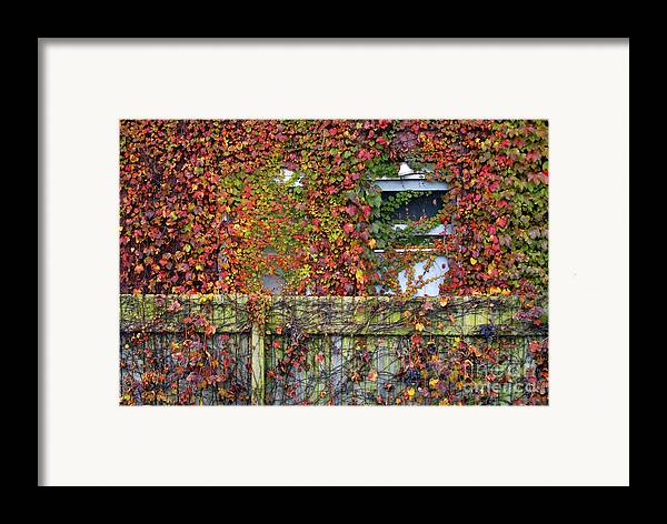 Historical Framed Print featuring the photograph Over The Back Fence by Paul W Faust - Impressions of Light