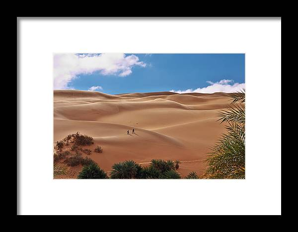 Palm Framed Print featuring the photograph Over The Dunes by Ivan Slosar