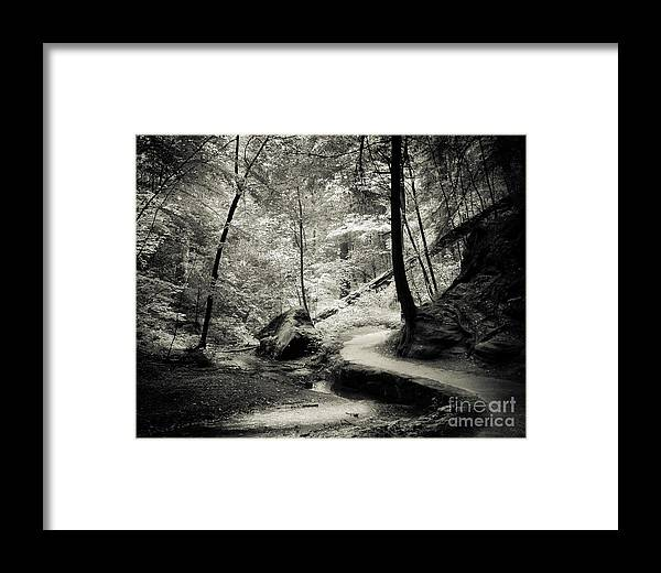 Ohio Framed Print featuring the photograph Over The River And Through The Woods by Robert Gardner