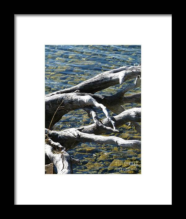 Water Framed Print featuring the photograph Over The Water by Louise Peardon