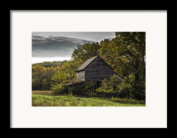 Landscape Framed Print featuring the photograph Overgrown by Amber Kresge
