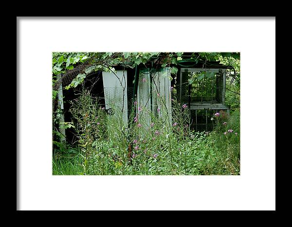 Rural Framed Print featuring the photograph Overgrown by Suzanne Gaff