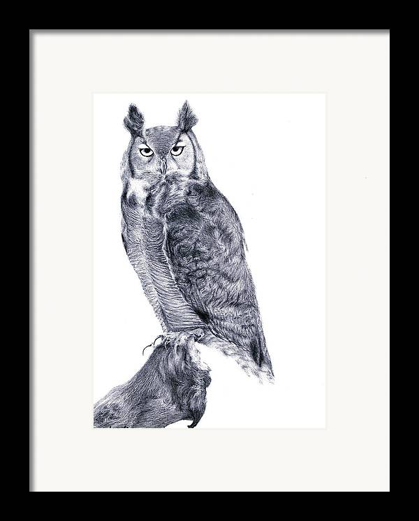 Owl Framed Print featuring the drawing Owl by Lucy D