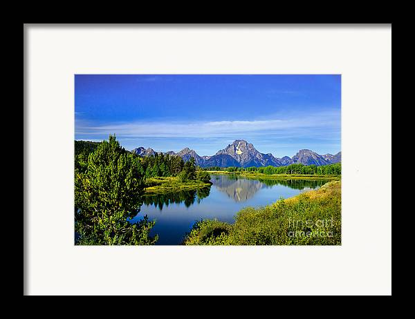 Grand Teton Framed Print featuring the photograph Oxbow Bend by Robert Bales