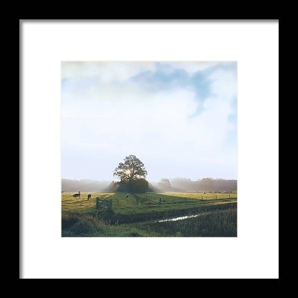 Tranquility Framed Print featuring the photograph Paint My Day by Bob Van Den Berg Photography