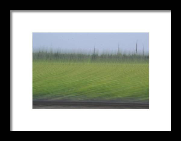 Field Framed Print featuring the photograph Painted Field by Michael Blake