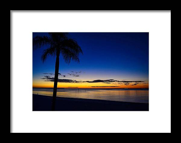 Palm Tree Framed Print featuring the photograph Palm After The Sun Is Gone by Pamela Blizzard