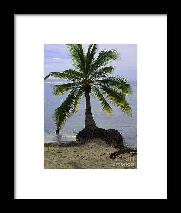 Palm Framed Print featuring the photograph Palm At The Edge Of The Sea Number Two by Heather Kirk