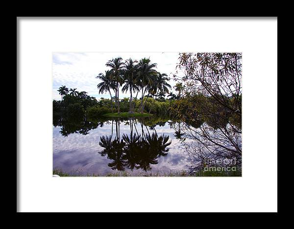 Palm Island Framed Print featuring the photograph Palm Island I by Christiane Schulze Art And Photography