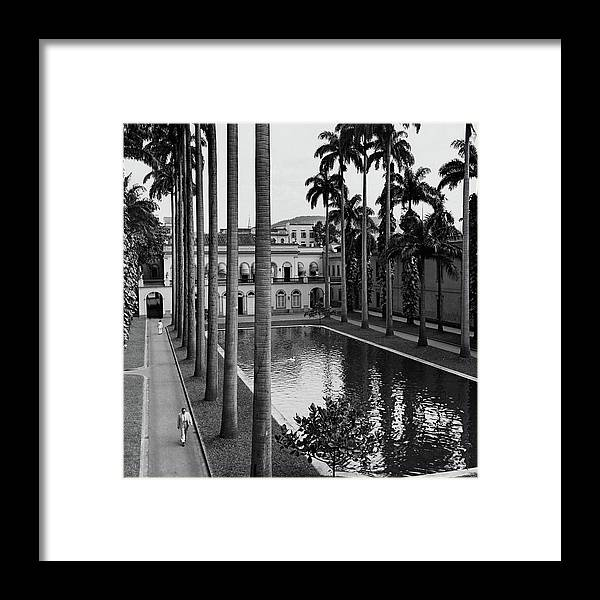 Exterior Framed Print featuring the photograph Palm Trees Bordering A Pool by Luis Lemus