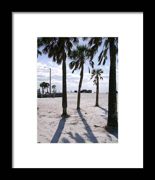 Palm Framed Print featuring the photograph Palms by Frank Matlock