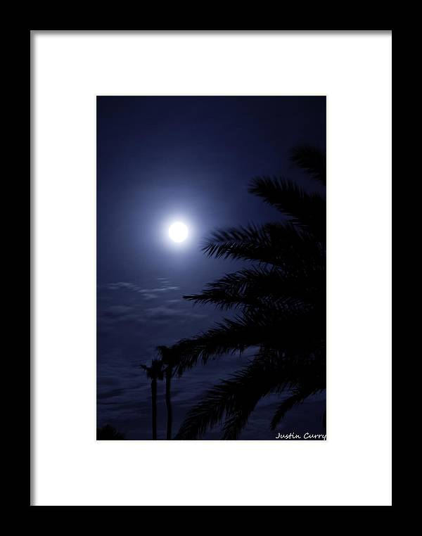Framed Print featuring the photograph Palms Of The Night by Justin Curry