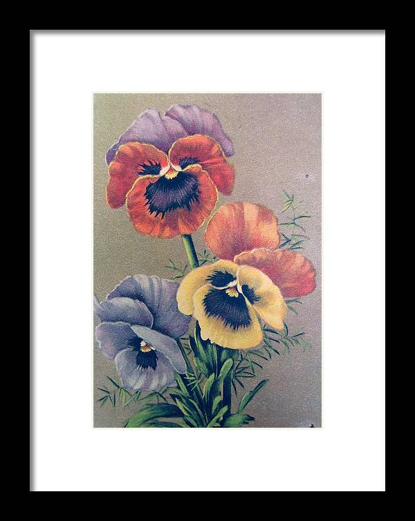 #vintagephotography #vintagepostcard #flowers #pansies Framed Print featuring the photograph Pansies Bouquet by Florinel Nicolai Deciu