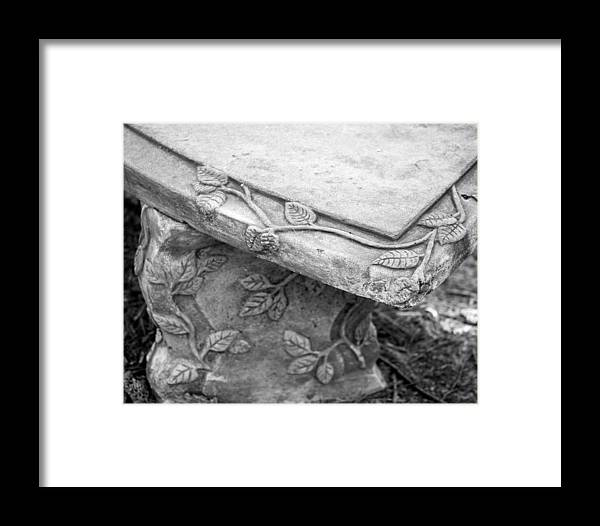 Bench Framed Print featuring the photograph Park Bench 1 by Mary Bedy