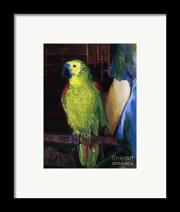 Bird; Pet; Green; Colourful; Tropical; Exotic; Interior; Domestic; Parrot; Birds; Parrots; Colorful; Animal; Oil Paint; Oil Painting; George; Wesley; George Wesley; Bellows; George Wesley Bellows; Animal; Animals; Animal Life; Pets; Pet Bird; Green; Red; Blue; Feather; Feather; Talon; Talons; Atop; Perch; Perched; Beak; Black Beak; Domesticated; Nature; Natural; Wildlife; Owner; Pet Owner; Woman; Arm; Blue Dress; Dress; Pet Owners; Indoor; Indoors; Creature; Living Thing; Alive; Wing; Wings Framed Print featuring the painting Parrot by George Wesley Bellows