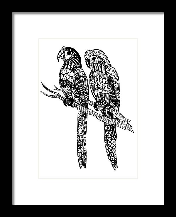 Animals Framed Print featuring the drawing Parrot Love by Sadie Maughan