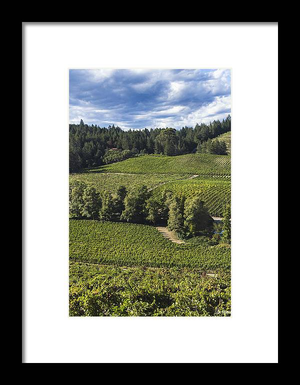 Clouds Framed Print featuring the digital art Party Clouds Over The Vineyards by Lee Jorgensen