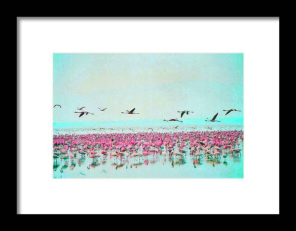 Flamingos Framed Print featuring the digital art Passing By by Joseph Wiegand