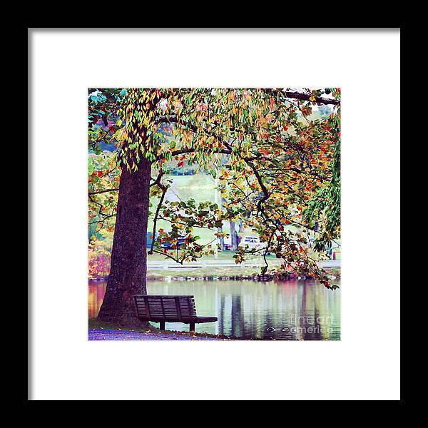 Bench Framed Print featuring the photograph Patches Of Color by Kerri Farley