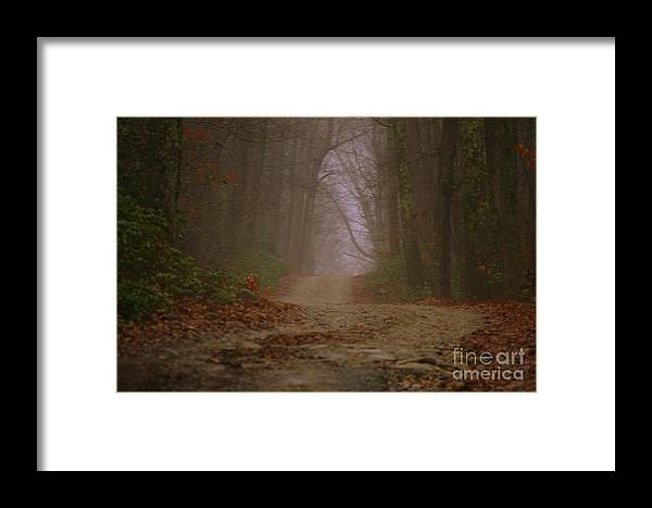 Country Road Framed Print featuring the photograph Path To Wolf Den by Neal Eslinger