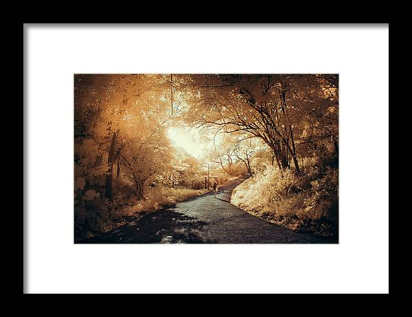 Shadow Framed Print featuring the photograph Pathway To Wonderland by D3sign