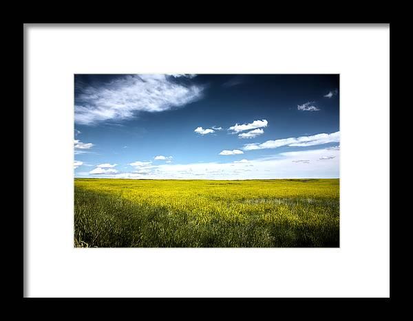 Pawnee National Grasslands Framed Print featuring the photograph Pawnee Grasslands by Shane Bechler