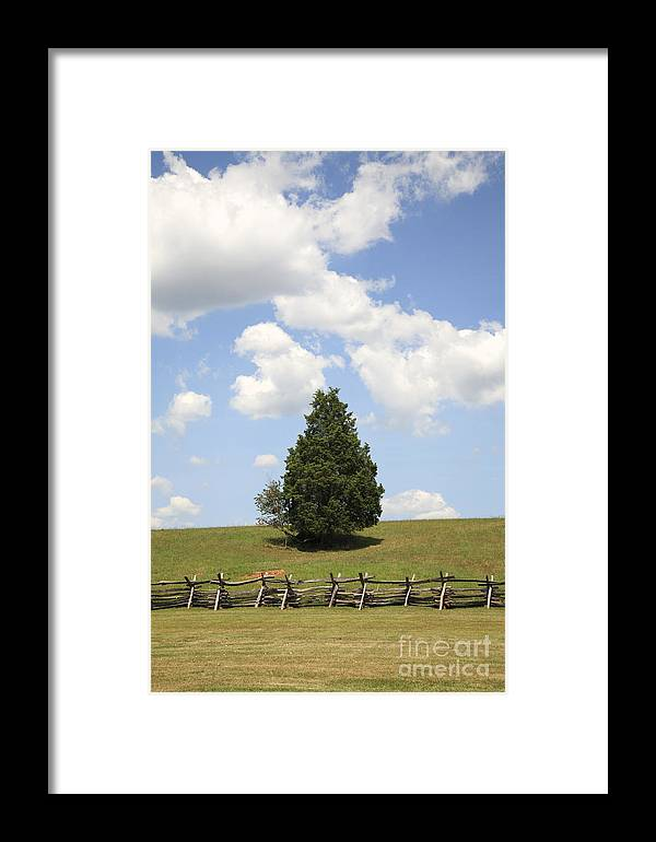 Battle Of Bull Run Framed Print featuring the photograph Peace At Manassas by William Kuta