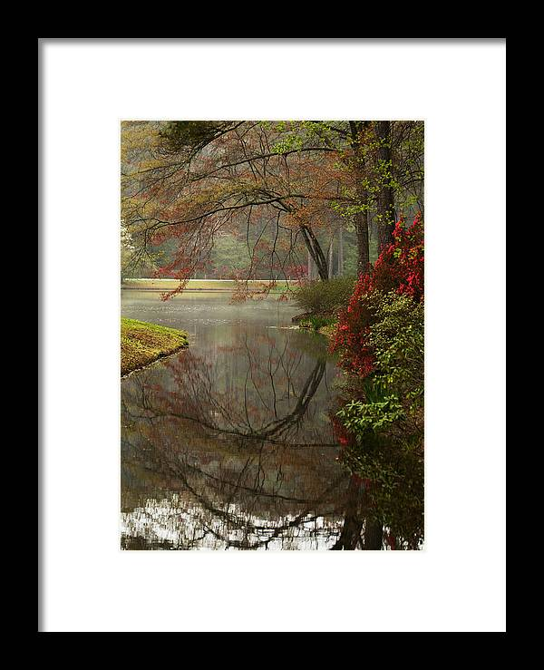 Callaway Framed Print featuring the photograph Peace In A Garden by Kathy Clark