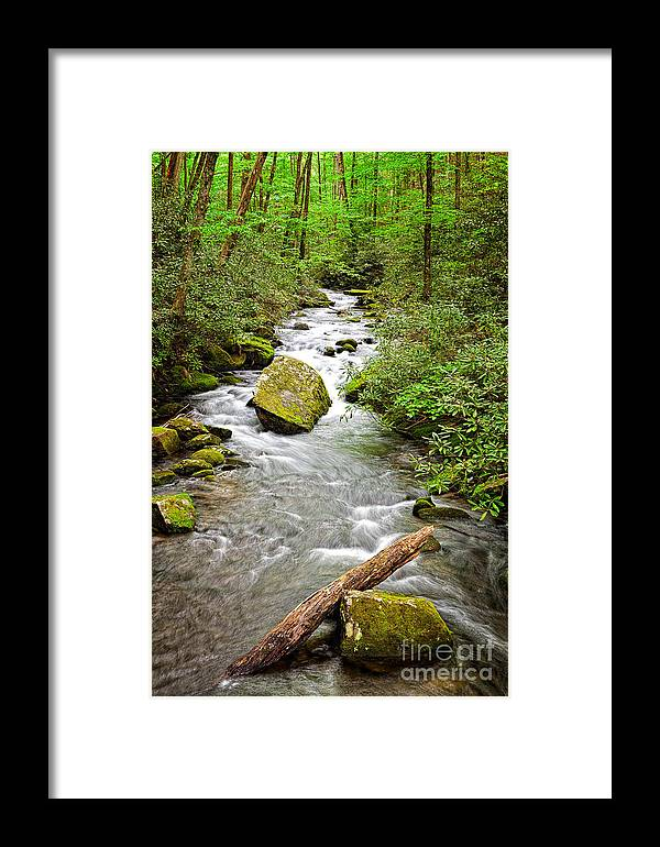 North Carolina Framed Print featuring the photograph Peaceful Flowing Waters by Dan Carmichael