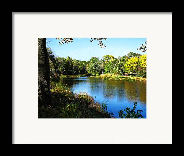 Summer Framed Print featuring the photograph Peaceful Lake by Susan Savad
