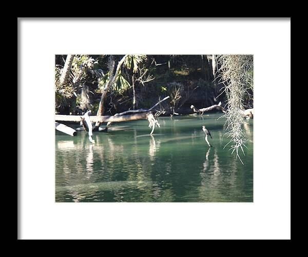 Landscape Framed Print featuring the photograph Peaceful River by Barbara Adkins