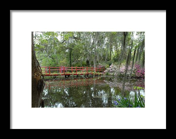 Framed Print featuring the photograph Peaceful Scene by Brian OSullivan