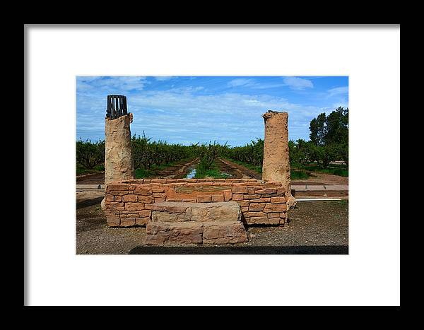 Farm Framed Print featuring the photograph Peach Orchard And Ruins by Richard Jenkins