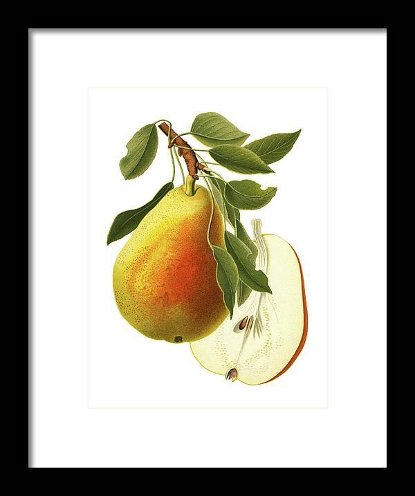 Art Framed Print featuring the digital art Pear by Ivan-96