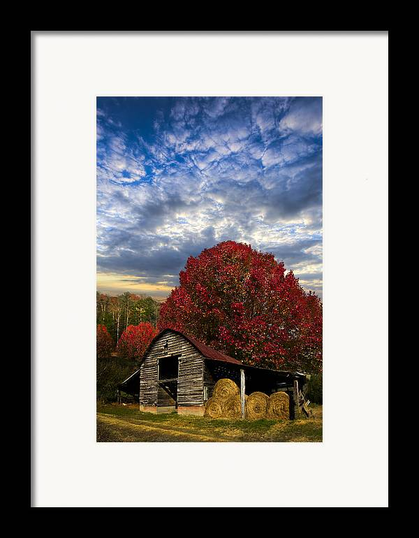 Appalachia Framed Print featuring the photograph Pear Trees On The Farm by Debra and Dave Vanderlaan