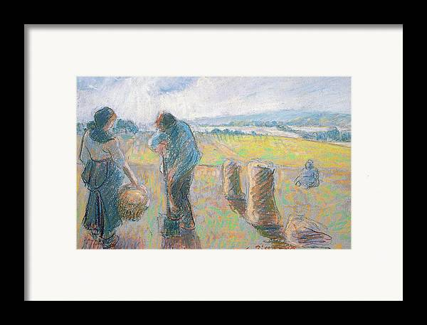 Agriculture Framed Print featuring the pastel Peasants In The Fields by Camille Pissarro