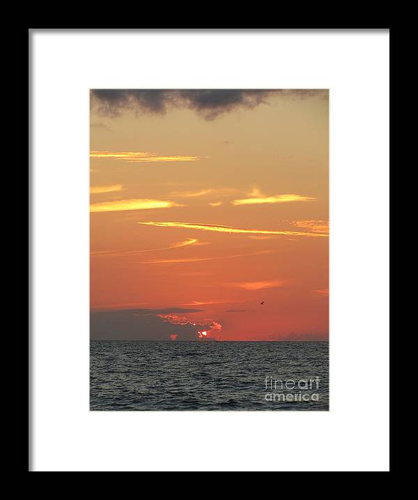 Sunrise Framed Print featuring the photograph Peeking Out by Jaclyn Hughes Fine Art