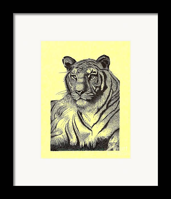 Original Framed Print featuring the drawing Pen And Ink Drawing Of Royal Tiger by Mario Perez