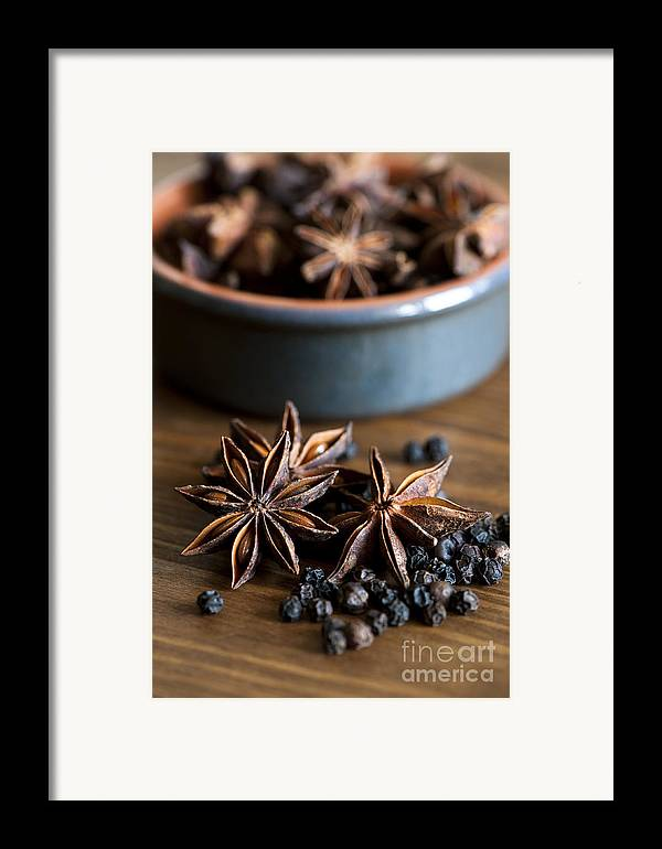 Anise Framed Print featuring the photograph Pepper And Spice by Anne Gilbert