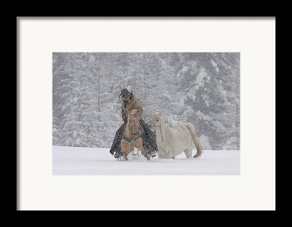 Cowboy Framed Print featuring the photograph Persevere Through All by Diane Bohna