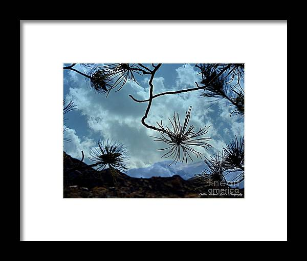 Perspective Framed Print featuring the photograph Perspective by Bobbee Rickard