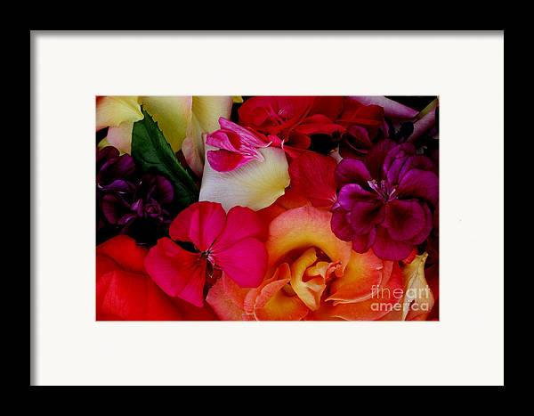 Photography Framed Print featuring the photograph Petal River by Jeanette French